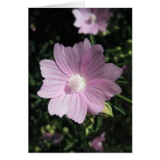 Portuguese-feliz aniversário-5 petals card
