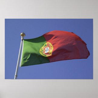 Portuguese Flag RF) Poster
