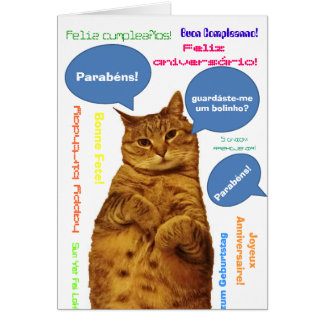 Portuguese: Parabens! silly cat Greeting Card