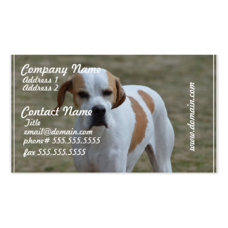 Portuguese Pointer Dog Double-Sided Standard Business Cards (Pack Of 100)