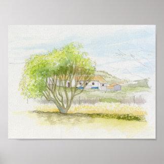 Portuguese villa and tree poster