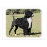 Portuguese Water Dog 9Y510D-145 Postcard