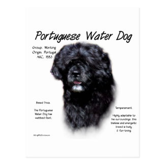 Portuguese Water Dog History Design Postcard