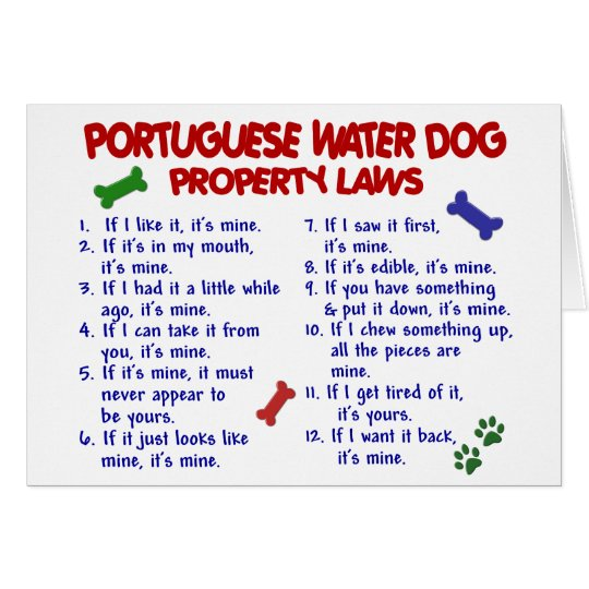 PORTUGUESE WATER DOG Property Laws 2 Card