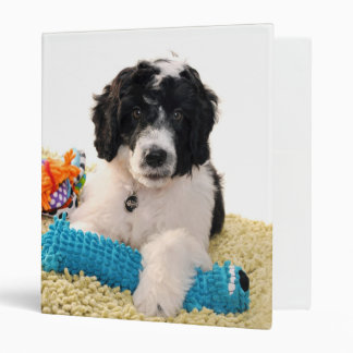 Portuguese Water Dog Puppy With Toys Binder