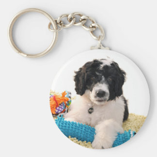 Portuguese Water Dog Puppy With Toys Key Chains