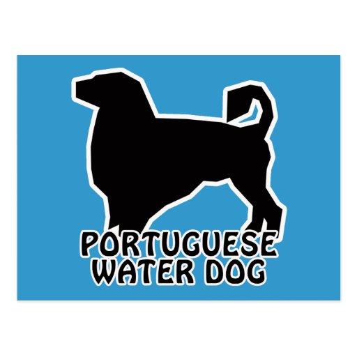 Portuguese Water Dog T-Shirts and Gifts Post Card