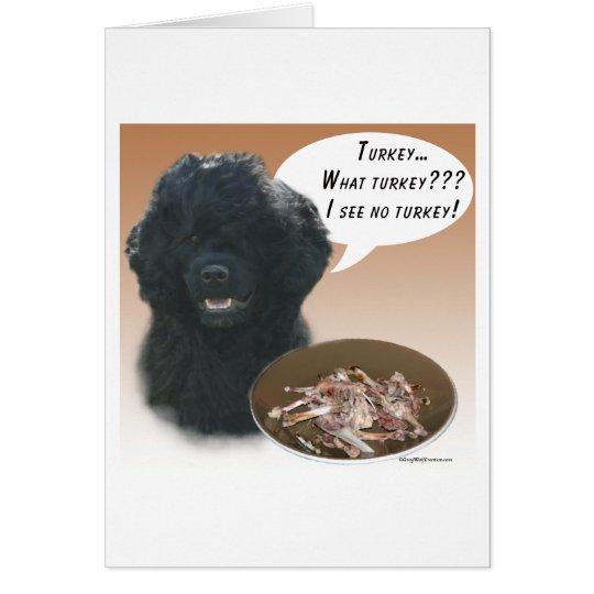 Portuguese Water Dog Turkey Card