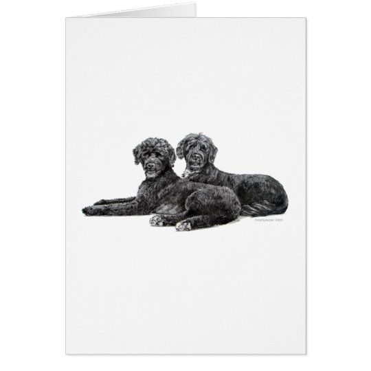 Portuguese Water Dogs Card
