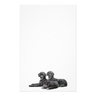Portuguese Water Dogs Stationery