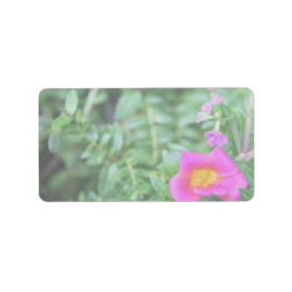 Portulaca dark pink flower green back faded personalized address labels