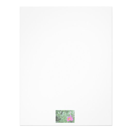 Portulaca dark pink flower green back faded personalized letterhead