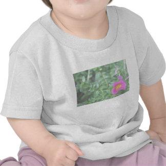 Portulaca dark pink flower green back faded tshirts