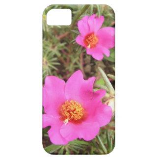Portulaca Flowers iPhone SE/5/5s Case