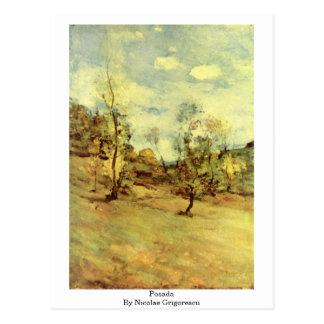Posada By Nicolae Grigorescu Postcard