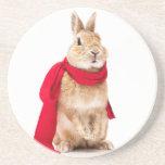posavasos de un conejito posavasos personalizados