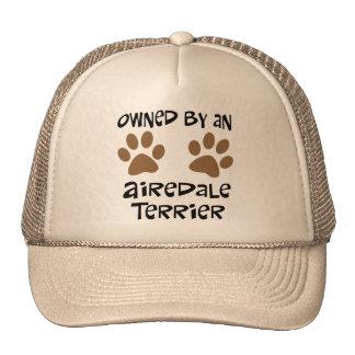 Poseído por Airedale Terrier Gorra
