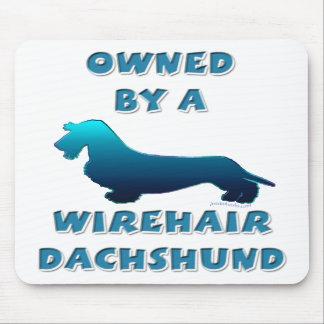 Poseído por un Dachshund de Wirehair Tapetes De Ratones