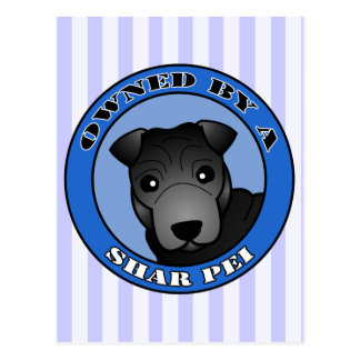 Poseído por un Shar Pei - capa negra - azul Tarjetas Postales
