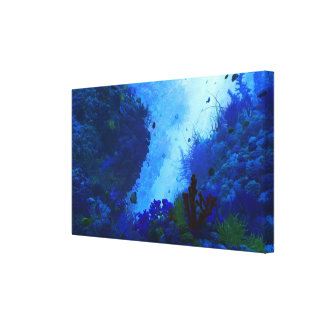 Poseidon's Playground Canvas Print