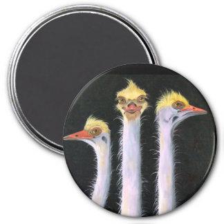 Posers Fridge Magnets