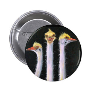 Posers Pinback Buttons