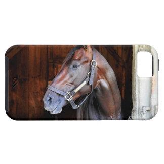 Posición competitiva iPhone 5 carcasa