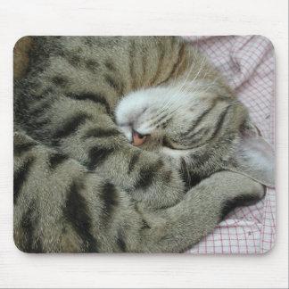 Posición torpe el dormir del gato alfombrillas de raton