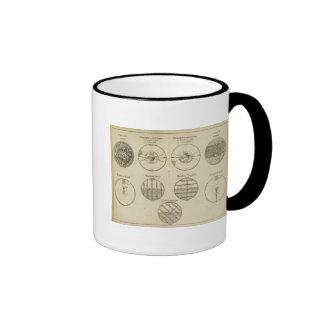 Posiciones de la esfera tazas de café