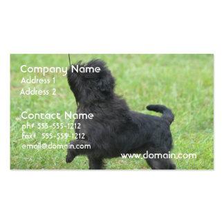 Posing Affenpinscher Business Card