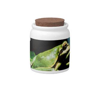 Posing Frog Candy Jar