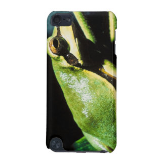 Posing Frog iTouch Case iPod Touch (5th Generation) Cases
