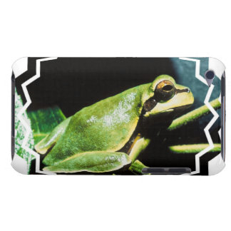 Posing Frog iTouch Case Barely There iPod Cases
