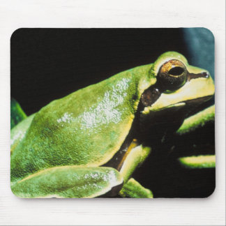 Posing Frog Mouse Pad