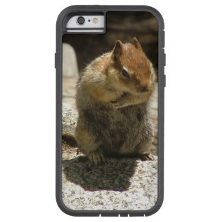 Posing Glamourous squirrel Tough Xtreme iPhone 6 Case