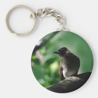 Posing little bulbul bird keychain