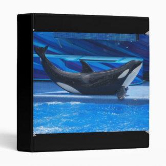 Posing Orca Binder