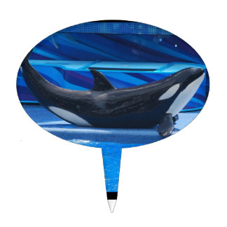 Orca Whale Cake Toppers