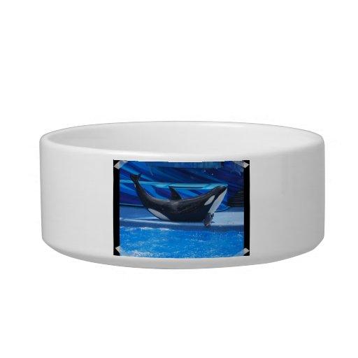 Posing Orca Pet Bowl