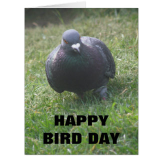 Posing Pigeon Custom Giant Birthday Card