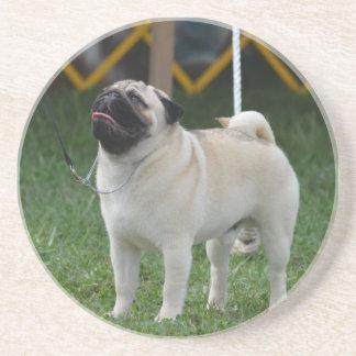 Posing Pug Beverage Coaster