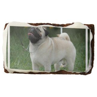 Posing Pug Rectangular Brownie