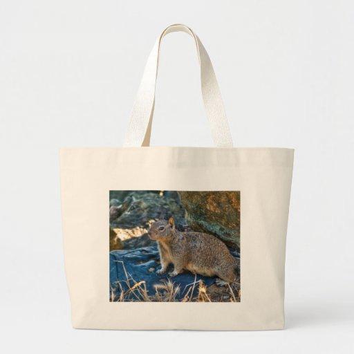 Posing Squirrel Tote Bag