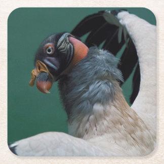 Posing Vulture Square Paper Coaster