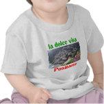 Positano Italy T Shirts