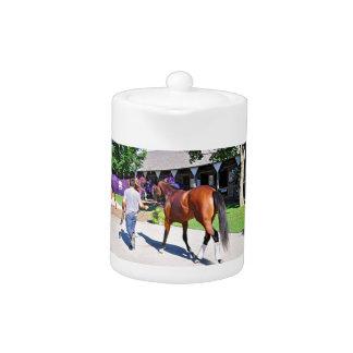 Positivamente real en el asilo del caballo