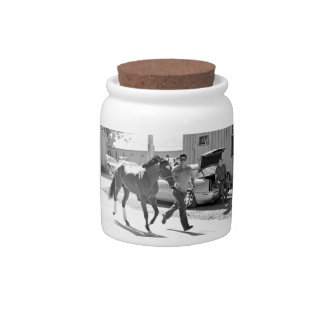 Positively Royal at Horse Haven Candy Dish