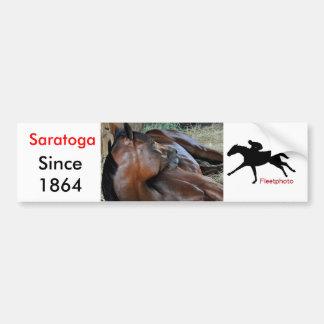 Positively Royal Bumper Sticker
