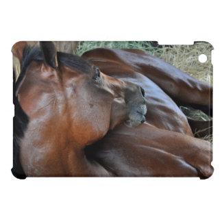 Positively Royal iPad Mini Covers