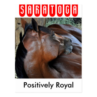 Positively Royal Postcard